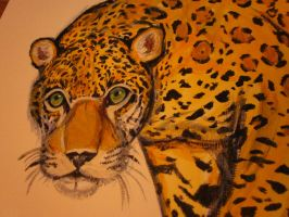 Acrylic Jaguar(close up) by TheDorkyDerpster