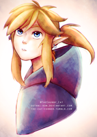 Breath Of The Wild by MrrCat