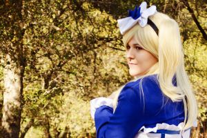 Maid Alois: I Can Be Nice by chaebin
