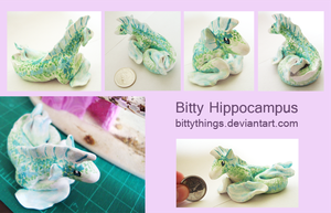 Bitty Hippocampus -  SOLD by Bittythings