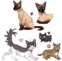 Zero kitties by emlan
