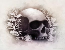 Life and death by pilife
