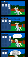 The TARDIS is Not an Outhouse by animegx43