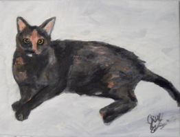 Old cat painting by JillyFoo