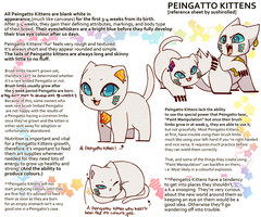 Peingatto Kittens [Ref.] by Sushirolled