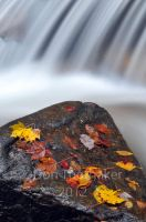 Autumn Falls DT3 9001 by detphoto