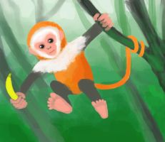The year of a monkey by Masanohashi