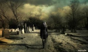 Walking With Silence by Estruda