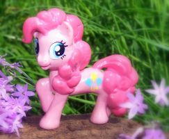 pinkie presentation by melinaminotti