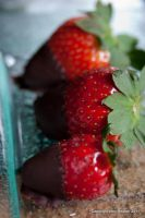 Chocolate Strawberries by amyhooton