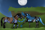 Midnight Lovers ~ Breeding Picture by SkyeDaPie
