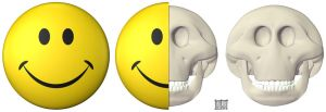 Smiley Skull by freeny