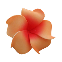 Tropical Flower PNG by LadyAmalthea12-stock