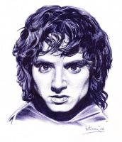 frodo by Jim-Dacuycoy