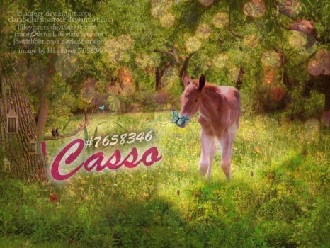 'Casso's Layout HL by jo-without-an-e
