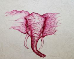 Pink Elephant 14 by DVanDyk