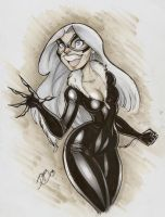 Black Cat Copics by DaveJorel