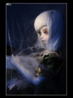 come into my cobweb by Syrkell