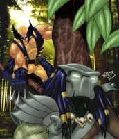 Wolverine VS Predator COLORED 2013 by LucasAckerman