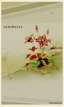 Synthesis by screenvision