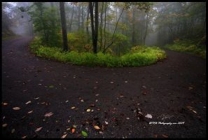 A Bend in the Road by TRBPhotographyLLC