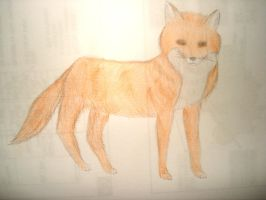 Fox (Drawing) by Leticiahtk
