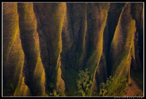 Fluted by aFeinPhoto-com