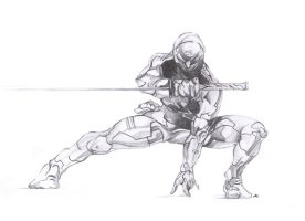 Gray Fox by ParadigmTradition