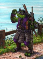 Donatello 2 by Phraggle