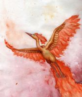 Moltres by superpsyduck