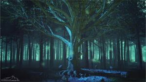Enchanted Forest part 1 by 3DLandscapeArtist