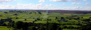 Yorkshire Fields by SimonHS