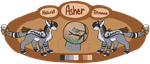 Asher | Reference Sheet by MysticalWhisper