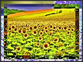Sunflower by BL8antBand