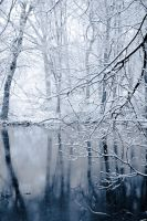 winter wonderland 2 by Alesana-x-Fan