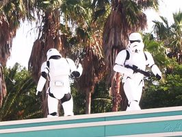 WDW: Stormtrooper Patrol by toughtink
