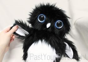 Hoobert the Black Owlet Plush by PastYourPorchlight