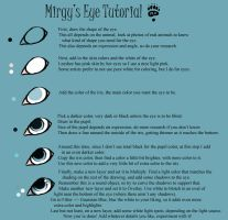 Eye Tutorial by Mirgy