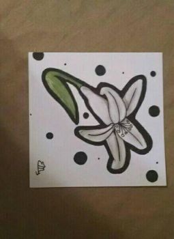 White Lily by TMM-Maddie
