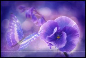 Purple dreams by Nameda