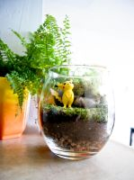Pikachu Pokemon Terrarium the Second by MaForet