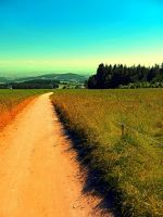 Hiking on a hot afternoon by patrickjobst