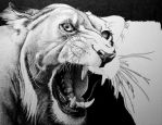 Whiskers and Teeth WIP 5 by ronmonroe