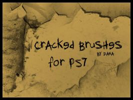 Cracked Brushes by xxDanaxx