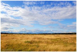 the plains by photom17