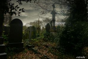 Cemetery Graves by Estruda