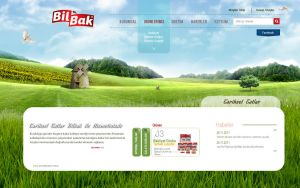 Bilbak Food Website by grafiket