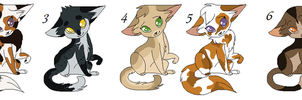 5 point cat Adopts OPEN by good-within-u