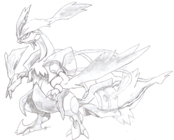 White Kyurem by goldgriffin