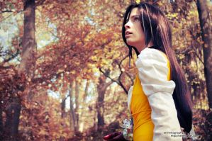 FF9: Wandering by skwinkography